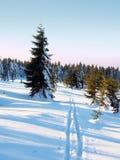 Δύο τρόποι για διαγώνιο να κάνει σκι χωρών στα χειμερινά βουνά Στοκ Εικόνες
