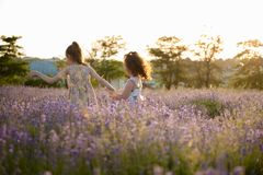 Δύο υγιή τρέχοντας μικρά κορίτσια μεταξύ του άνθους ανθίζουν τους τομείς το καλοκαίρι στοκ φωτογραφία