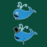 Δύο φάλαινες με τις αυτοκόλλητες ετικέττες Moustaches Στοκ φωτογραφίες με δικαίωμα ελεύθερης χρήσης