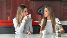 Δύο φίλοι γυναικών σε έναν καφέ κατανάλωσης κουζινών, ομιλία και κατοχή της διασκέδασης απόθεμα βίντεο