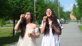 Δύο φίλοι με μια καλή διάθεση περπατούν στο πάρκο και κάνουν τις φυσαλίδες σαπουνιών στο θερινό ηλιόλουστο καιρό HD φιλμ μικρού μήκους