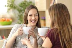Δύο φίλοι που μιλούν και που πίνουν στο σπίτι στοκ εικόνα