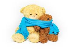 Δύο φίλοι teddy-αρκούδων Στοκ φωτογραφία με δικαίωμα ελεύθερης χρήσης