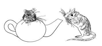 Δύο φιλικά μογγολικά jirds ή μογγολικά gerbils (unguiculatus Meriones) Στοκ φωτογραφίες με δικαίωμα ελεύθερης χρήσης
