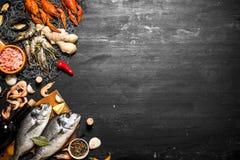 Δύο φρέσκα ψάρια με ένα μπουκάλι του κρασιού Στοκ Φωτογραφίες