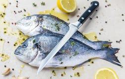 Δύο φρέσκα ψάρια dorada με το μαχαίρι και το καρύκευμα Στοκ Εικόνες