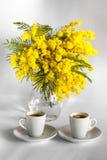 Δύο φλιτζάνια του καφέ και βάζο με τα λουλούδια mimosa Στοκ Φωτογραφία