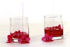 Δύο φλυτζάνια γυαλιού με το κόκκινο υγρό σε ένα άσπρο υπόβαθρο με τα ιώδη λουλούδια που επιπλέουν στο υγρό Στοκ φωτογραφίες με δικαίωμα ελεύθερης χρήσης