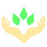 Δύο χέρια που περιβάλλουν τα πράσινα φύλλα ελεύθερη απεικόνιση δικαιώματος