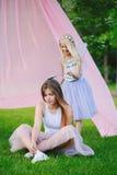 Δύο χαμογελώντας αστείες καυκάσιες αδελφές κοριτσιών που φορούν τις ρόδινες φούστες του Tulle tutu στο δασικό λιβάδι πάρκων στο η Στοκ Εικόνες