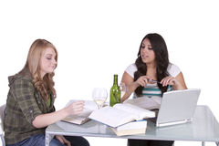Δύο χαριτωμένα κορίτσια που μελετούν στα γραφεία τους Στοκ εικόνα με δικαίωμα ελεύθερης χρήσης