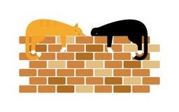 Δύο χαριτωμένες εσωτερικές κοντές γάτες τρίχας αγκαλιάζουν στοργικά το ένα με το άλλο σε ένα παράθυρο ελεύθερη απεικόνιση δικαιώματος
