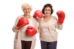 Δύο χαρούμενες ώριμες γυναίκες με τα εγκιβωτίζοντας γάντια Στοκ φωτογραφία με δικαίωμα ελεύθερης χρήσης