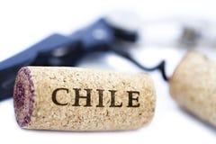 Το απομονωμένο κρασί της Χιλής βουλώνουν & το ανοιχτήρι μπουκαλιών Στοκ Εικόνες