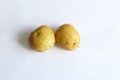 Δύο χρυσές πατάτες Στοκ εικόνα με δικαίωμα ελεύθερης χρήσης