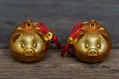 Δύο χρυσοί χοίροι στοκ εικόνα