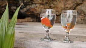 Δύο ψάρια κλόουν επιπλέουν στο νερό σε δύο κύπελλα γυαλιού σε μια εξωτική ακτή τη γαμήλια ιδέα του ζεύγους Φιλιππινέζικος εξωτικό απόθεμα βίντεο