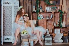 Δύο όμορφα αισθησιακά κορίτσια με τα τέλεια λεπτά πόδια Στοκ Εικόνες