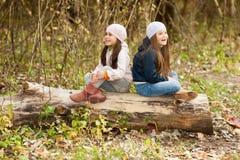 Δύο όμορφα κορίτσια που φορούν μια beret συνεδρίαση στην τοποθέτηση κούτσουρων Στοκ Φωτογραφία