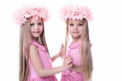Δύο όμορφα μικρά κορίτσια στα ρόδινα φορέματα στοκ φωτογραφία με δικαίωμα ελεύθερης χρήσης