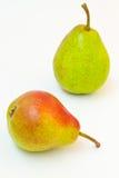 Δύο ώριμα αχλάδια: πράσινος και κόκκινος Στοκ εικόνες με δικαίωμα ελεύθερης χρήσης