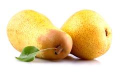 Δύο ώριμα κίτρινα αχλάδια στο άσπρο υπόβαθρο Στοκ Εικόνα