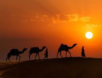 Δύο cameleers (οδηγοί καμηλών) με τις καμήλες στους αμμόλοφους Thar deser Στοκ Φωτογραφία