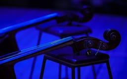 Δύο contrabasses στο στάδιο στον μπλε φωτισμό στοκ εικόνες με δικαίωμα ελεύθερης χρήσης