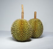 Δύο durians Στοκ εικόνες με δικαίωμα ελεύθερης χρήσης