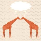 Δύο giraffes πέρα από το ρηγέ υπόβαθρο Στοκ φωτογραφία με δικαίωμα ελεύθερης χρήσης