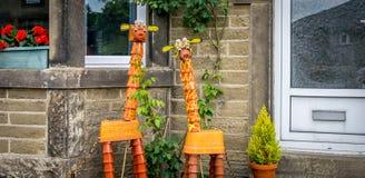 Δύο giraffes που γίνονται από τα δοχεία εγκαταστάσεων στοκ εικόνα