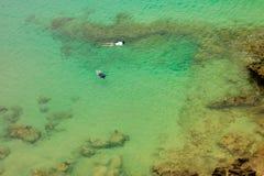 Δύο persoms που κολυμπούν με αναπνευτήρα στο πράσινο θαλάσσιο νερό Στοκ Εικόνες