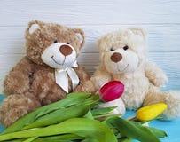 Δύο teddy αντέχουν, τουλίπα, ξύλινη Στοκ Εικόνες
