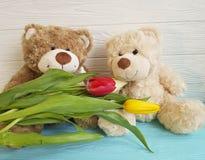 Δύο teddy αντέχουν, τουλίπα, ξύλινος φίλος Στοκ Εικόνες