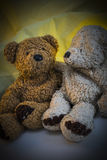 Δύο Teddy αντέχουν το ένα δίπλα στο άλλο Στοκ εικόνα με δικαίωμα ελεύθερης χρήσης