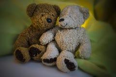Δύο Teddy αντέχουν το ένα δίπλα στο άλλο Στοκ Εικόνες
