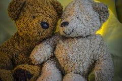 Δύο Teddy αντέχουν το ένα δίπλα στο άλλο Στοκ Εικόνα
