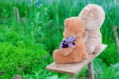 Δύο Teddy αντέχουν το καλοκαίρι παιχνιδιών μεταξύ της πράσινης χλόης με τα λουλούδια, Στοκ Εικόνες