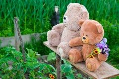 Δύο Teddy αντέχουν το καλοκαίρι παιχνιδιών μεταξύ της πράσινης χλόης με τα λουλούδια, Στοκ εικόνα με δικαίωμα ελεύθερης χρήσης