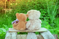 Δύο Teddy αντέχουν το καλοκαίρι παιχνιδιών μεταξύ της πράσινης χλόης με τα λουλούδια, Στοκ Φωτογραφία