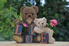 Δύο teddy αρκούδες με τις πέτρες και τα τριαντάφυλλα αγάπης Στοκ Εικόνες