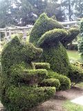 Δύο Topiary αρκούδες στοκ εικόνες