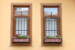 Δύο Windows με τις ράβδους Στοκ εικόνες με δικαίωμα ελεύθερης χρήσης