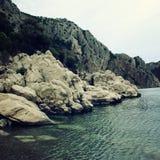 δύσκολη ακροθαλασσιά Πέτρες που καλύπτονται με τους πράσινους θάμνους Στοκ Εικόνες