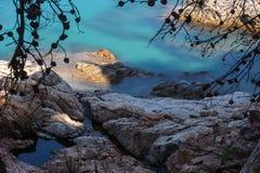Δύσκολη ακτή κάτω από τους κλάδους & το μεταξωτό σμαραγδένιο νερό στοκ φωτογραφία με δικαίωμα ελεύθερης χρήσης