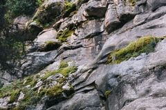 Δύσκολος απότομος βράχος με το βρύο στοκ φωτογραφία