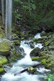 Δύσκολος κολπίσκος βουνών στοκ φωτογραφίες με δικαίωμα ελεύθερης χρήσης