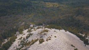 Δύσκολος λόφος που σκορπίζεται με τις άσπρες πέτρες πέρα από το μικτό δασικό συνδετήρα Εναέρια άποψη του ρωσικού τοπίου φιλμ μικρού μήκους