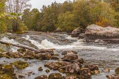 Δύσκολος ποταμός, δασικός ποταμός στοκ εικόνες με δικαίωμα ελεύθερης χρήσης