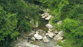 Δύσκολος ποταμός που ρέει κατά την πράσινη εναέρια άποψη τροπικών δασών Ροή ποταμών Mountan στο τροπικό δασικό ρεύμα νερού άποψης απόθεμα βίντεο